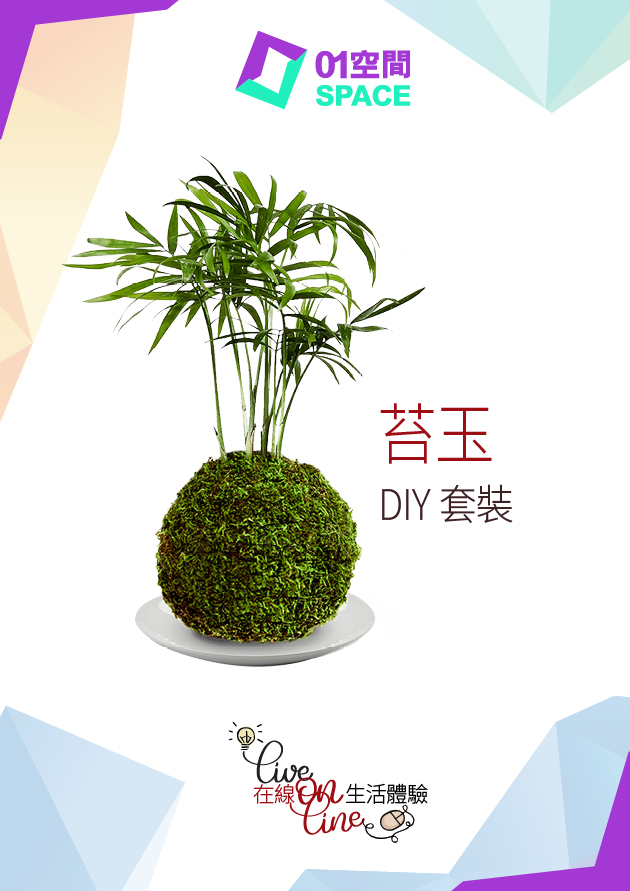 苔玉DIY KIT SET